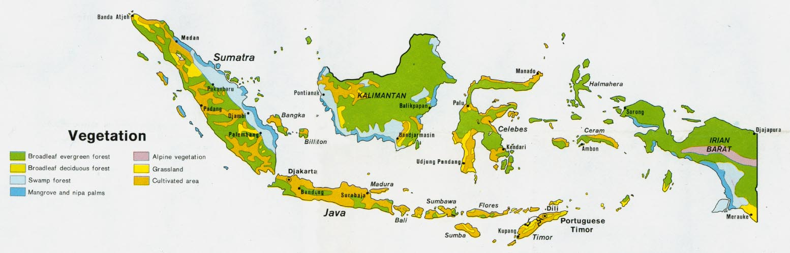 Indonesia Vegetation Map